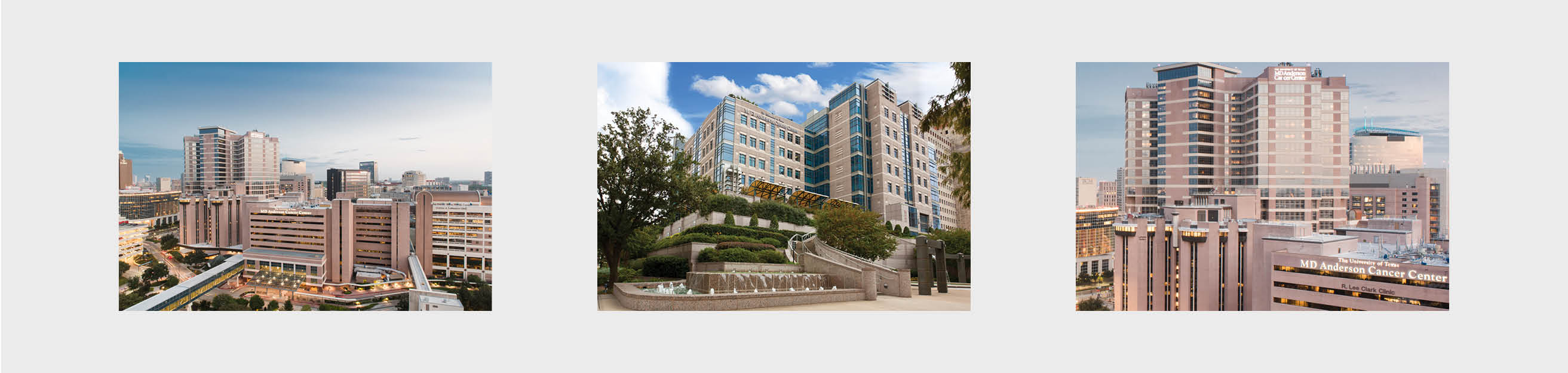 MD Anderson Images
