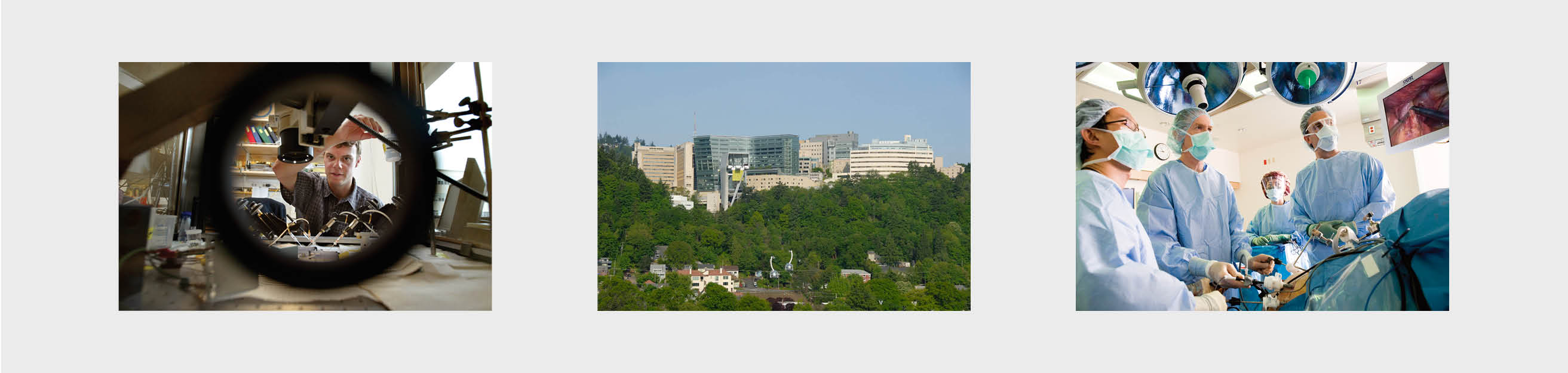Oregon Health  Science University